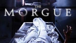 مشاهدة فيلم The Morgue 2008 أون لاين مترجم