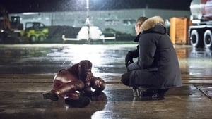 The Flash: 1×22