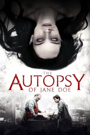 The Autopsy Of Jane Doe (2016) is one of the best movies like A Few Good Men (1992)
