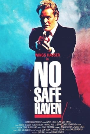 Image No Safe Haven