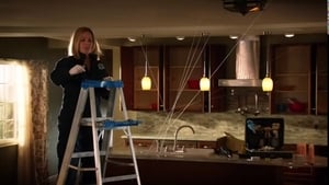 HD series online CSI: Crime Scene Investigation Season 14 Episode 18 Uninvited