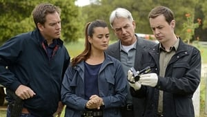 NCIS Season 9 :Episode 24  Till Death Do Us Part