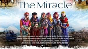 The Miracle – Mucize (2015) NF WEB-DL 480p & 720p GDrive | Bangla Subtitle