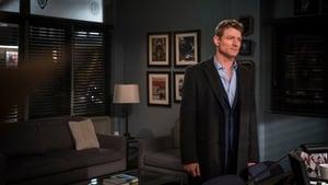 Law & Order: Special Victims Unit Season 19 Episode 14