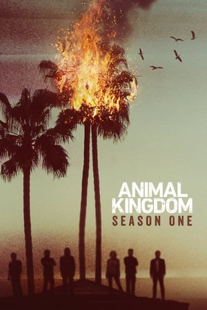 Animal Kingdom: Season 1