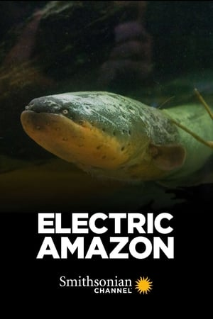 Electric Amazon