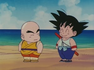 Dragon Ball: 1×14