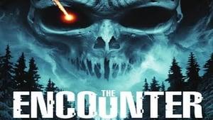 The Encounter (2015)