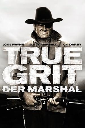 Der Marshal Film