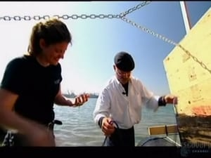 MythBusters: 2×8