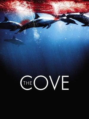Cove,