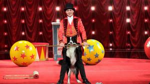 America's Got Talent Season 14 :Episode 8  Judge Cuts 1