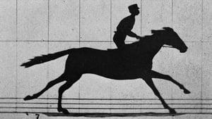Sallie Gardner at a Gallop