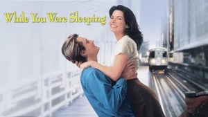 poster While You Were Sleeping