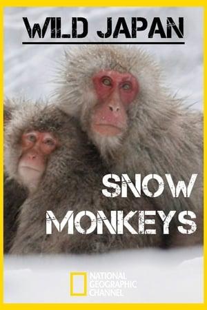 Wild Japan: Snow monkeys (2014)