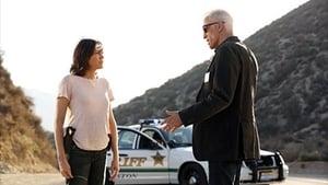 HD series online CSI: Crime Scene Investigation Season 14 Episode 10 Girls Gone Wild