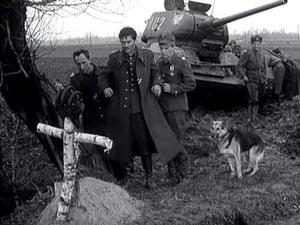 Čtyři z tanku a pes: 1×7