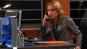 Covert Affairs Season 3 Episode 15