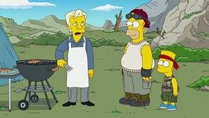 Die Simpsons: 23×14