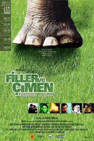 Elefanten und Gras
