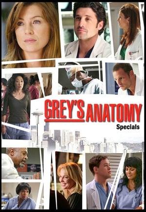 Grey's Anatomy: Specials