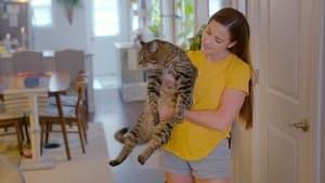 Cat People Season 1 Episode 4