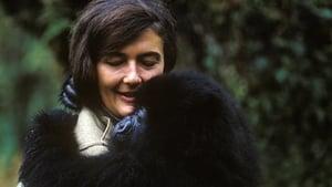 Dian Fossey: Secrets in the Mist