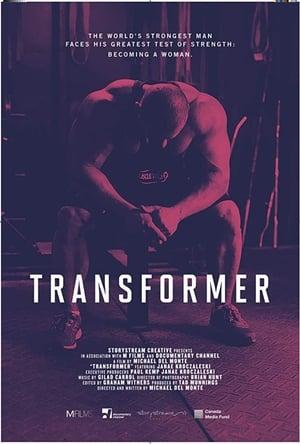 Image Transformer