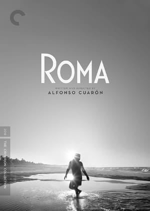 Roma-Azwaad Movie Database