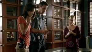 Hawaii Five-0 Season 1 :Episode 13  The Beginning