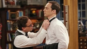 The Big Bang Theory 8×8