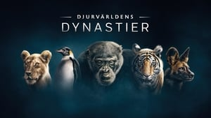 English movie from 2018-2018: Dynasties