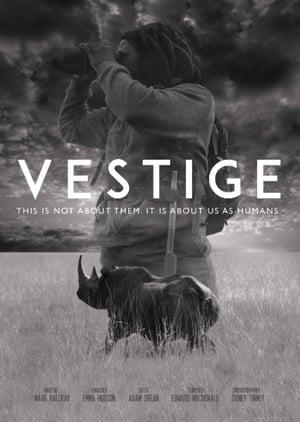 Vestige (2018)