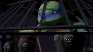 Ţestoasele Ninja 2012 Sezonul 2 Episodul 3 Dublat în Română