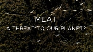 Meat: A Threat to Our Planet (2019)