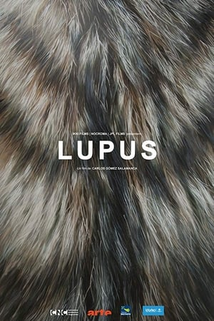 Lupus 2016 Film Streaming VF Complet En Français