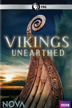 Vikings Unearthed (2014)
