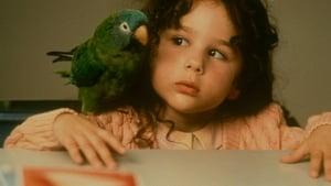 Paulie (1998) film online