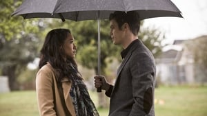 The Flash: 2×21