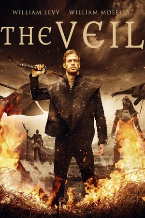 Poster The Veil 2016