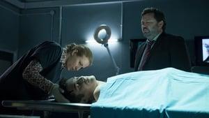 The Brokenwood Mysteries: 1×4