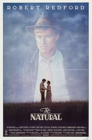 The Natural (1984) is one of the best movies like Fear And Loathing In Las Vegas (1998)