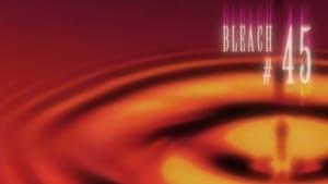 Bleach: 1×45