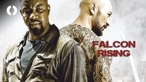 Falcon Rising online