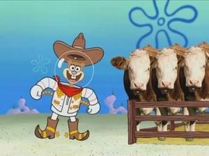 SpongeBob SquarePants Season 7 :Episode 23  Rodeo Daze
