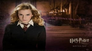 Harry Potter E L'Ordine Della Fenice (2007), [XviD – Ita Ac3 Eng Mp3 – Sub Ita Eng]