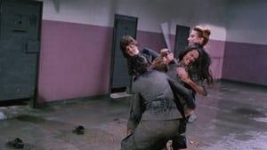 Violence in a Women's Prison (1982)