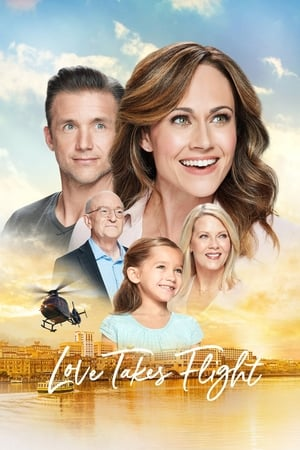Poster Love Takes Flight (2019)