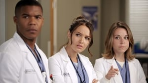 Grey's Anatomy: 9 Temporada x Episódio 5