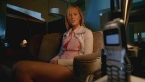 Online CSI: Miami Temporada 5 Episodio 16 ver episodio online Hogar Roto
